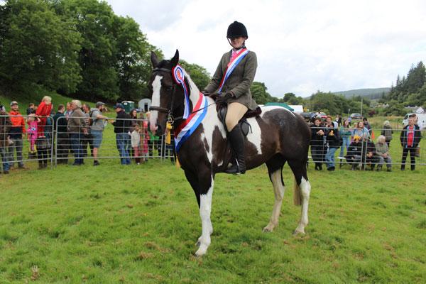 Supreme Champion and Horse & Pony Champion